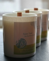 Scent Trail Lemongrass & Ginger Aromatherapy Soy Candle